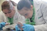 Les ateliers interactifs ont initi&eacute; les jeunes filles de 2e et 3e secondaire &agrave; de nombreux domaines, dont la biochimie de la sant&eacute;.<br>