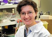 La professeure Larissa Takser, pédiatre et chercheuse, s'intéresse à la toxicité des PBDE. Elle mène une vaste étude auprès de mères et deleurs enfantsdans la région de Sherbrooke.