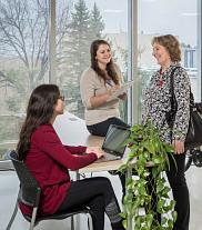 Les deux étudiantes ayant participé au démarrage de la Clinique en environnement à l'hiver 2017 rencontrent une cliente.