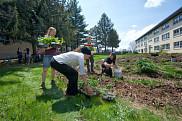 La Quinzaine permettra aux étudiants de faire des liens entre leur propre domaine d'études et le développement durable.