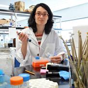 <p>La D<sup>re</sup>&nbsp;Julie Carrier, M.D., gastroent&eacute;rologue, chercheuse au Centre de recherche clinique &Eacute;tienne-Le&nbsp;Bel du CHUS et professeure &agrave; la Facult&eacute; de m&eacute;decine et des sciences de la sant&eacute; de l&rsquo;UdeS.</p>