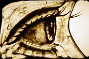 <em>Oeil de sable</em>, r&eacute;alis&eacute; par Jos&eacute;e Courtemanche.<br>