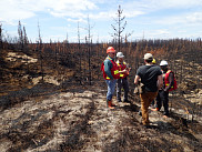 Les ingénieurs forestiers se rencontrent pour faire état des impacts du feu, juin 2017