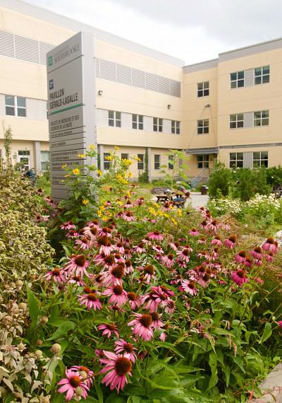 Des jardins collectifs agrémentent tous nos campus.