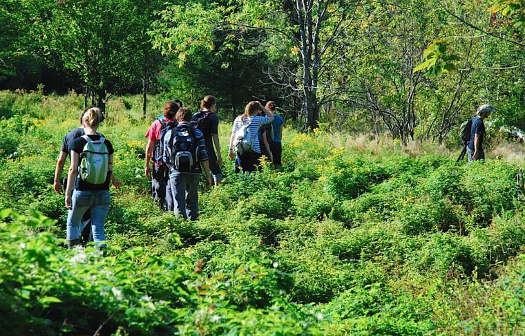 Des étudiants en écologie du Département de biologie de la Faculté des sciences explorent ce milieu naturel.