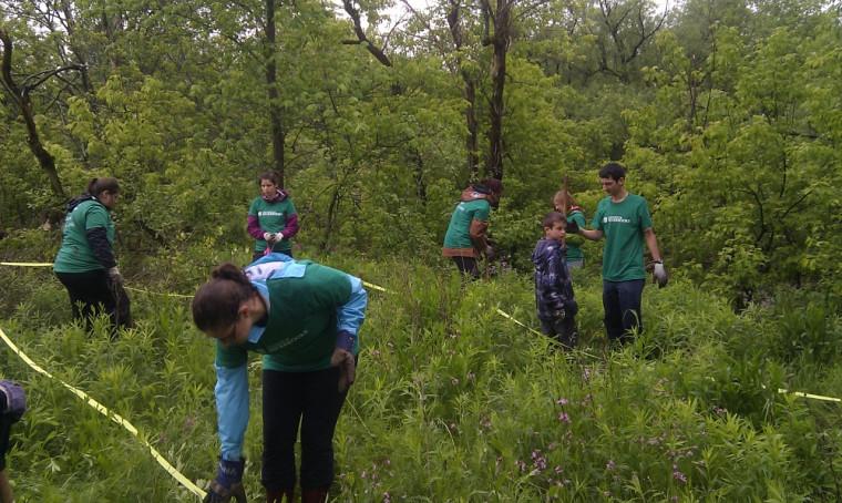 Des étudiants s'apprétant à planter des arbres.