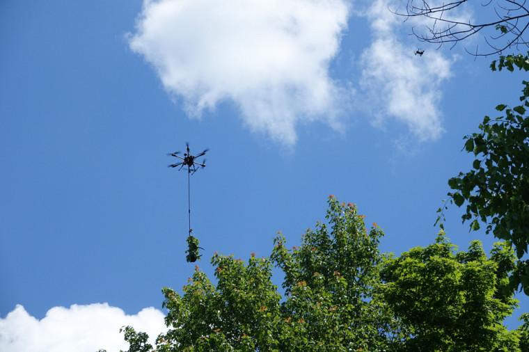Pour compléter l'outil DeLeaves, les chercheurs suggèrent un drone de leur cru à autonomie accrue.