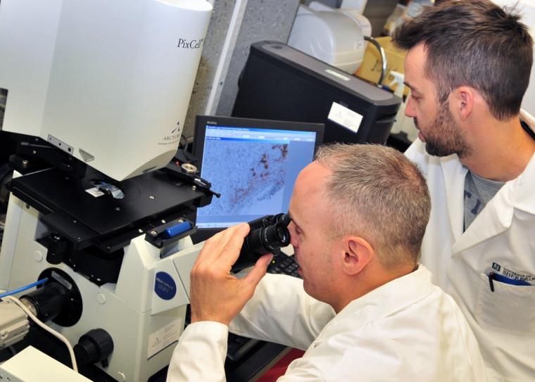 Le professeur Gobeil analyse un échantillon de tumeurs humaines au microscope sous l'œil vigilant de Jérôme Côté.