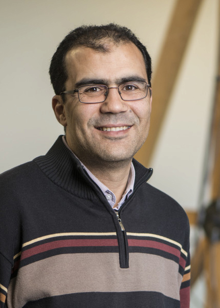 Professeur Mourad Karray