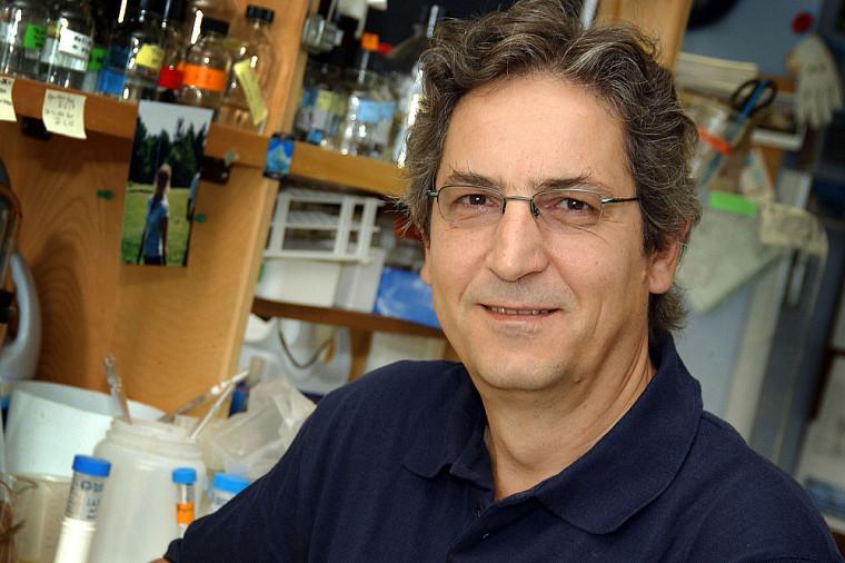 Le professeur Raymund J. Wellinger