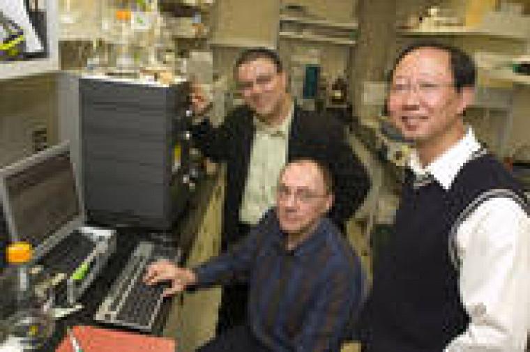 Le responsable du serveur CLUSS, Abdellali Kelil, doctorant en informatique, avec Ryszard Brzezinski, professeur au Département de biologie, et Shengrui Wang, professeur au Département d\'informatique.