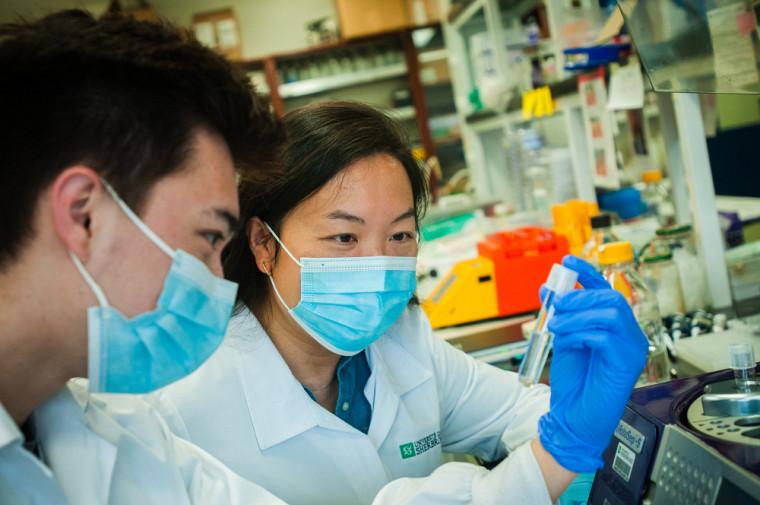 L'UdeS améliore son rang au classement concernant les sommes allouées à la recherche.