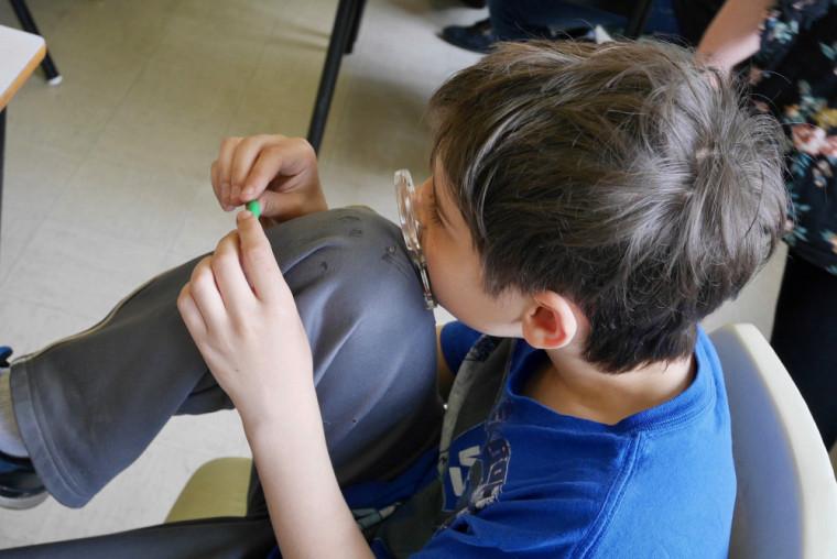 Un élève observe à la loupe les traces laissées par différents prédateurs sur sa chenille en pâte à modeler.