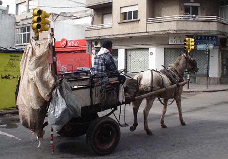 La collecte des matières recyclables s'effectue à l'aide de charrettes tirées par des chevaux.
