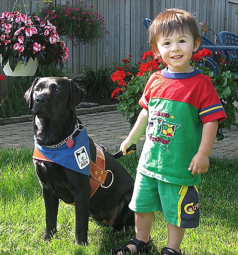Les chiens-guides de la fondation MIRA sont bien connus pour changer la vie de plusieurs personnes non voyantes. Désormais, des chiens accompagnateurs jouent maintenant un rôle important pour aider les familles d'enfants autistes.