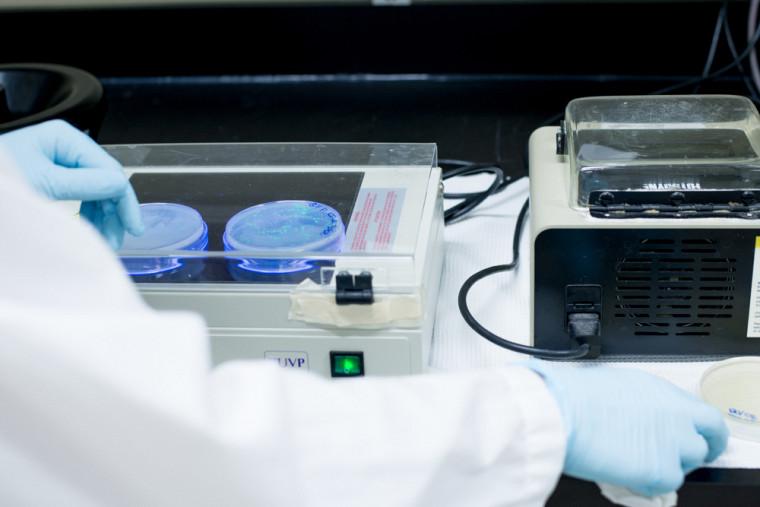 Trois chaires de recherche du Canada ont été renouvelées en génie civil, en génétique moléculaire, ainsi qu'en pneumologie pédiatrique.