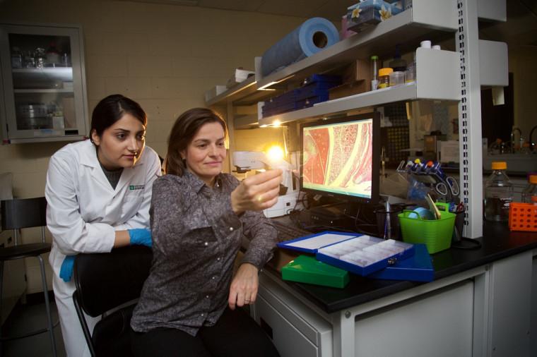 Avec son équipe, la PreÈve Langelier, titulaire de la Chaire pour les femmes en sciences et en génie au Québec, travaille à accroître la représentation féminine en sciences et en génie.
