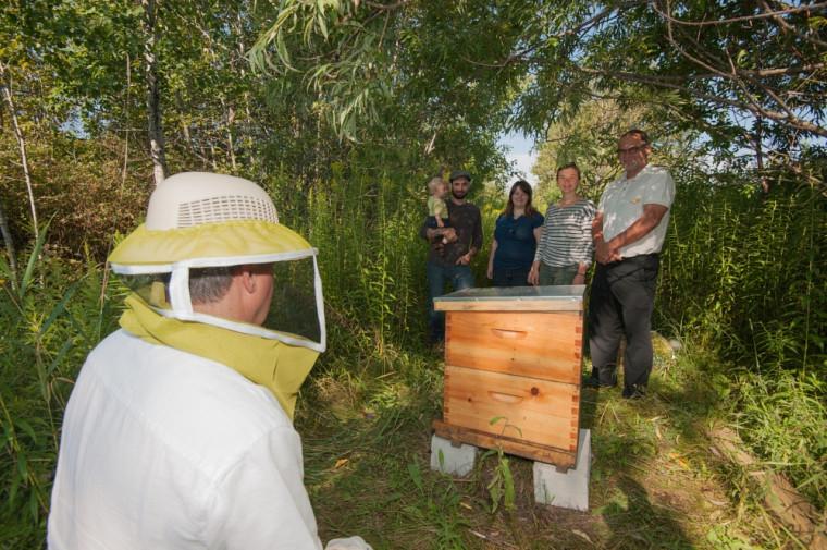 Yoann Bonnefon et son fils Théodore, d'Enzymes Miel, Valérie Duchesne et Rosalie Hudon-Voyer, de Ruche Campus, et le vice-recteur Alain Webster sont heureux de constater que les abeilles se sont bien adaptées à leur nouvel environnement.