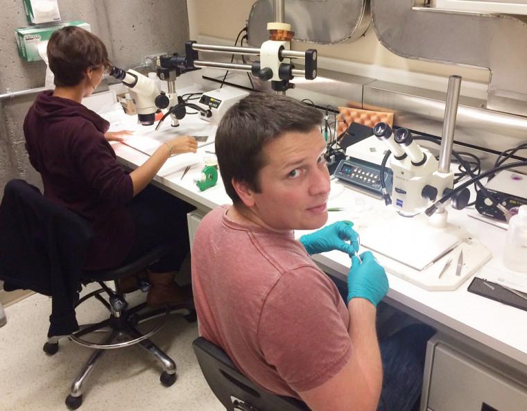 Sven Badoux et sa collègue Maude Lizairemanipulent de minuscules échantillonsde cuprates.