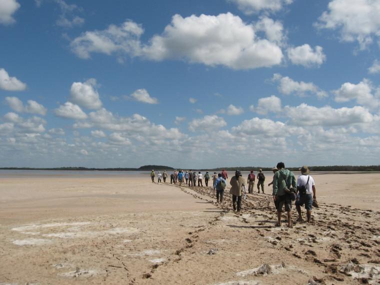 Un groupe d'étudiantes et d'étudiants se déplace sur le terrainau Mexique durant le cours Les grands écosystèmes du monde III.
