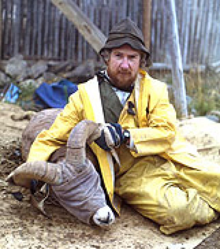 Le professeur Marco Festa-Bianchet lors d'un précédent projet sur les mouflons