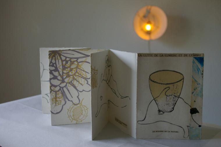 La création d'un livre d'artiste, seul ou avec des collaboratrices et des collaborateurs, est au programme; il sera alors possible d'y mêler arts visuels, arts appliqués, nouvelles technologies et création littéraire (poésie, récit, carnet de voyage, etc.).