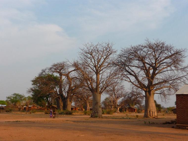 Village de Golomoti.