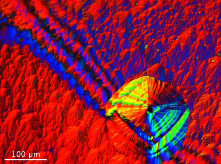 David Roy-Guay, étudiant au Département de physique de la Faculté des sciences, est finaliste avec son image Microtombeau de lumière.