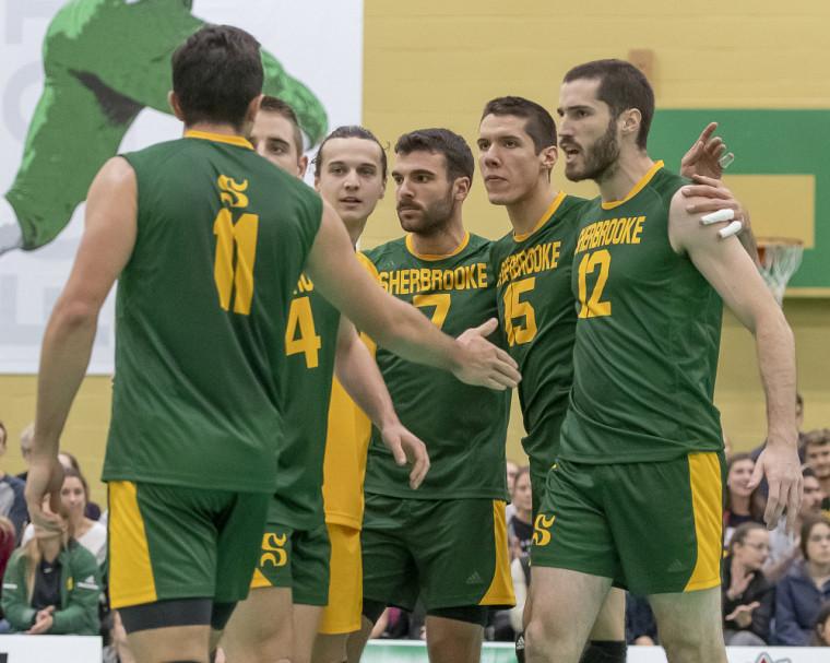L'équipe de volleyball masculin