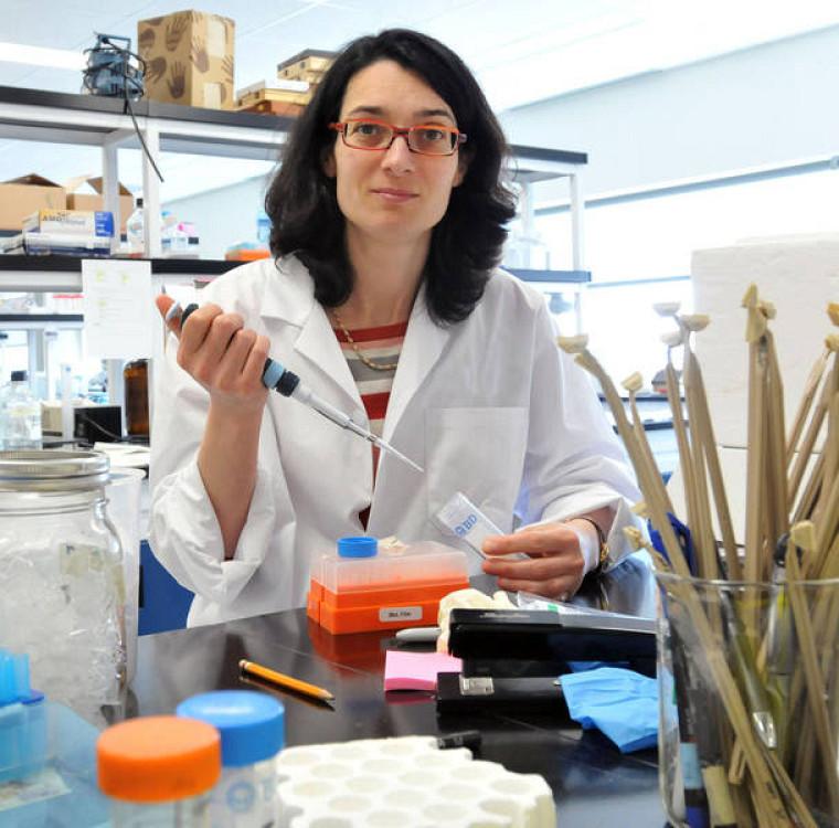 La DreJulie Carrier, M.D., gastroentérologue, chercheuse au Centre de recherche clinique Étienne-LeBel du CHUS et professeure à la Faculté de médecine et des sciences de la santé de l'UdeS.