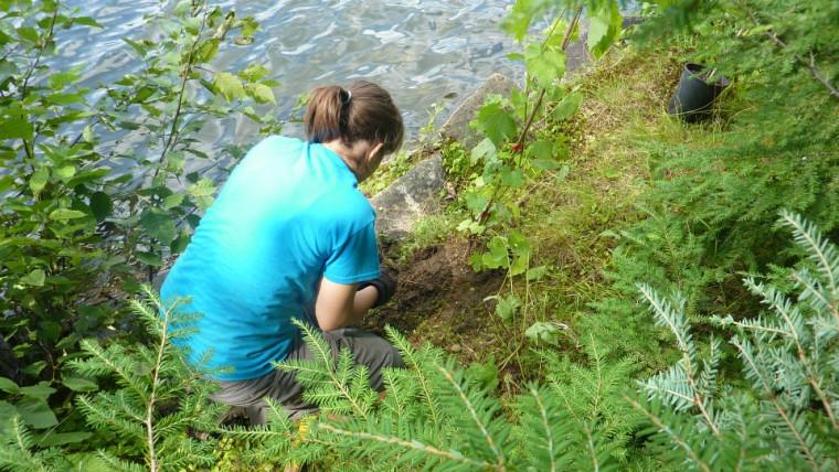 Au cours du premier stage de son baccalauréat en écologie, Raphaëlle avait pour objectif de revégétaliser les rives des cours d'eau de la région de Shawinigan.