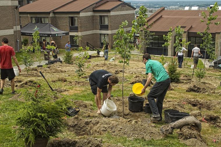 Plusieurs étudiantes et étudiants ont participé à la plantation le 26juillet.