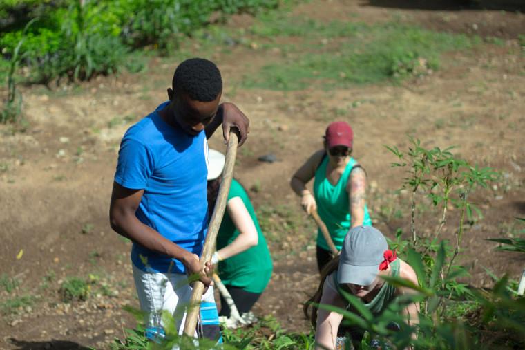 Les étudiantes et étudiants participeront à plusieurs activités dont des projets de fin d'études avec stage réalisés en Haïti.