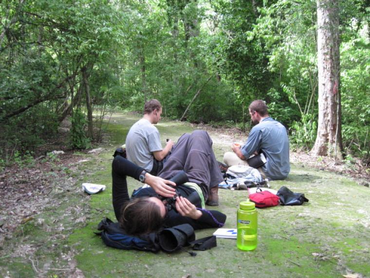 Pour observer les singes, les étudiants doivent s'installer au sol et utiliser des jumelles.