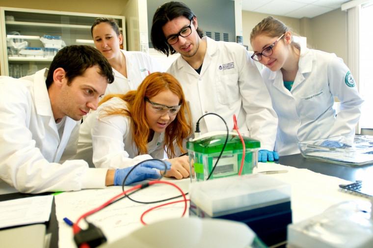 Mélanie Plourde (au centre) et son équipe de recherche s'intéressent aux suppléments riches en oméga-3 et leur effet potentiel sur la mémoire.