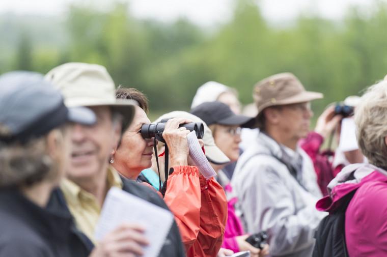 Demeurer actif physiquement, mais aussi socialement, est l'une des clés d'un vieillissement cérébral réussi.