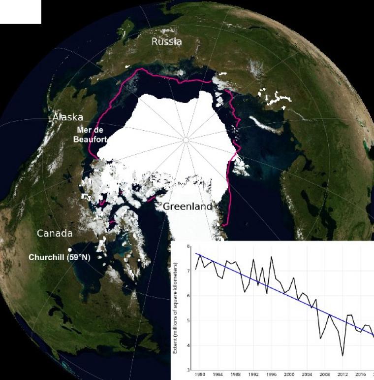 Étendue de la glace de mer arctique en septembre 2019, au moment où elle est minimale, dérivée des observations satellites. La ligne magenta indique la limite moyenne sur la période 1981-2010. En médaillon, la tendance de sa superficie du mois de septembre en millions de kilomètres carrés de 1979 à 2019, entre le maximum de 7.5 M km2 en 1980 et la valeur de 4.3 M km2 observée en septembre 2019. Source National Snow and Ice Data Center, NASA.