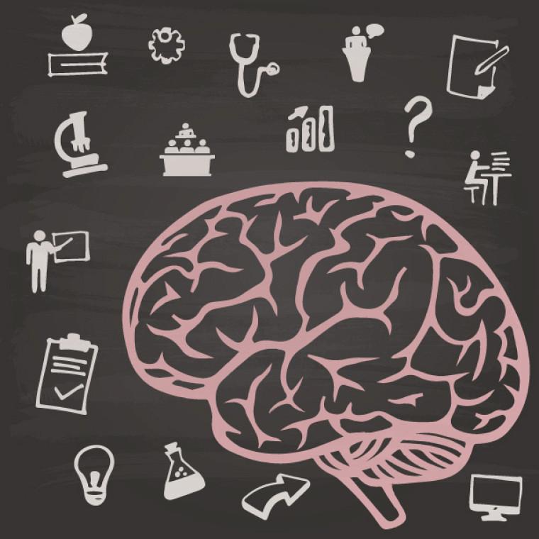 Le travail acharné modifie le cerveau et une étude récente par une équipe de l'Université de Sherbrooke le démontre.