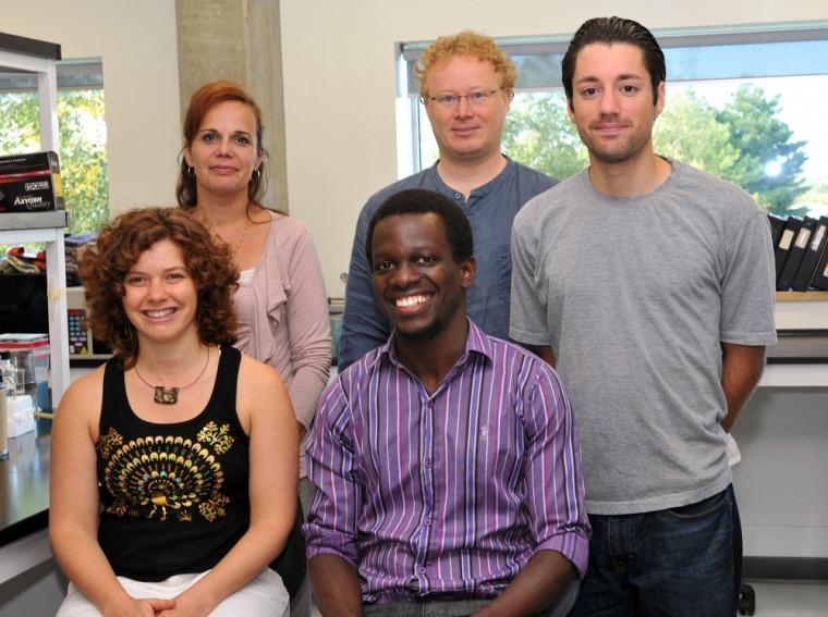 À l'avant,Emmanuelle Wilhelm,Isaac Nzaramba etAlex Magdzinski; et àl'arrière, la professeure Nancy Dumais et le professeurBrendan Bell ont pris part à cette recherche.