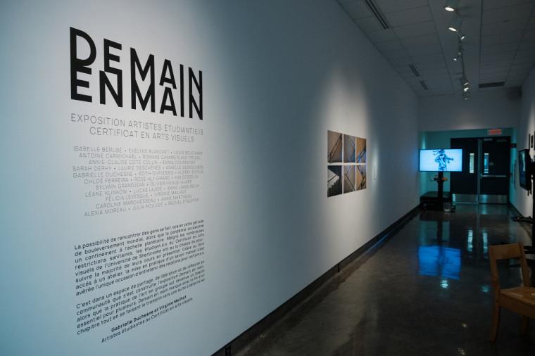 Les 28 artistes, mentionnés sur le panneau explicatif de l'exposition, ont apprécié pouvoir travailler leurs œuvres dans un atelier, en présentiel.