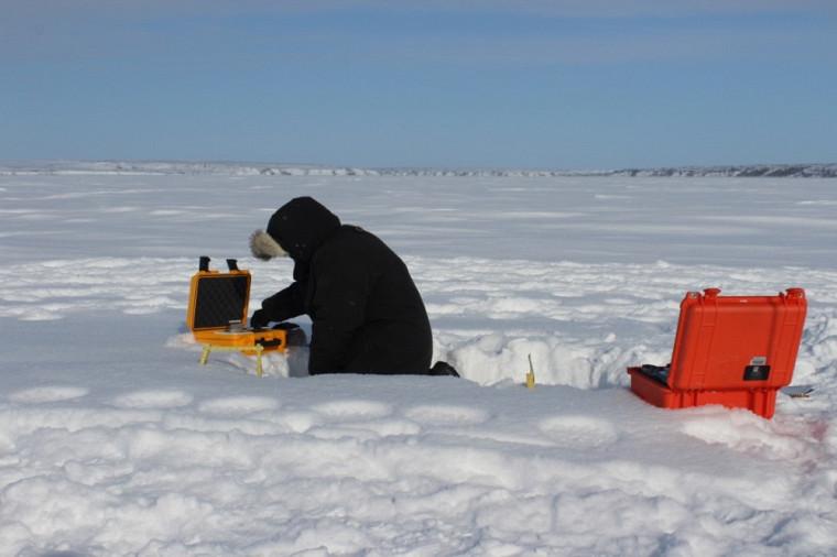 Alain Royer examinant les grains de neige de la toundra au nord d'Inuvik, TNO (69°N)