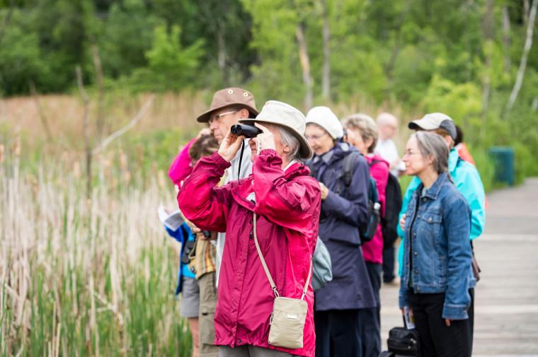 Activité d'ornithologie organisée par l'UTA.