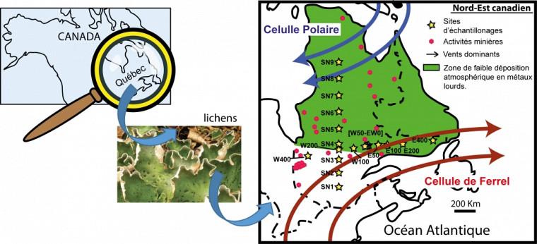 Sites de prélèvement des lichens