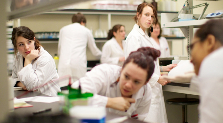 Une séance de travaux pratiques en immunologie, à la Faculté des sciences.