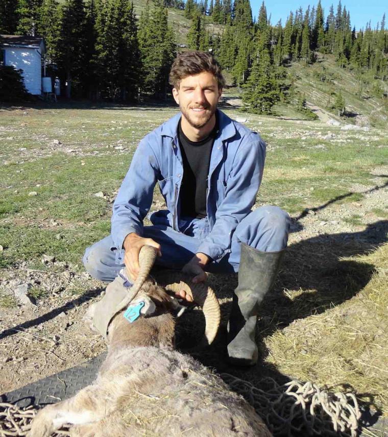 Marc-Antoine Poirier,étudiant à la maîtrise en écologie, en plein travail sur le terrain, en Alberta.