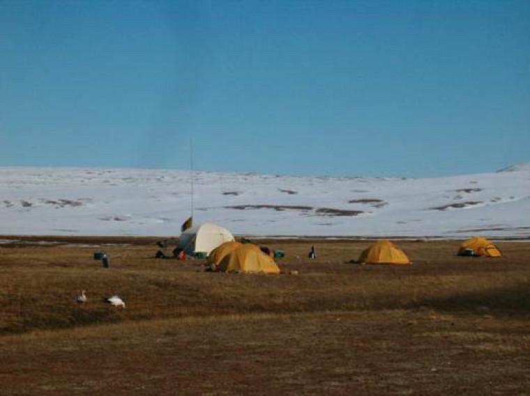 Campement temporaire à South Sawtooth Lake, Île d'Ellesmere, Nunavut, mai-juin 2008. On y étudie l'hydrologie et la sédimentologie dans le lac lors de la fonte de la neige et du dégel de la «couche active» du pergélisol, celle qui dégèle à l'été.