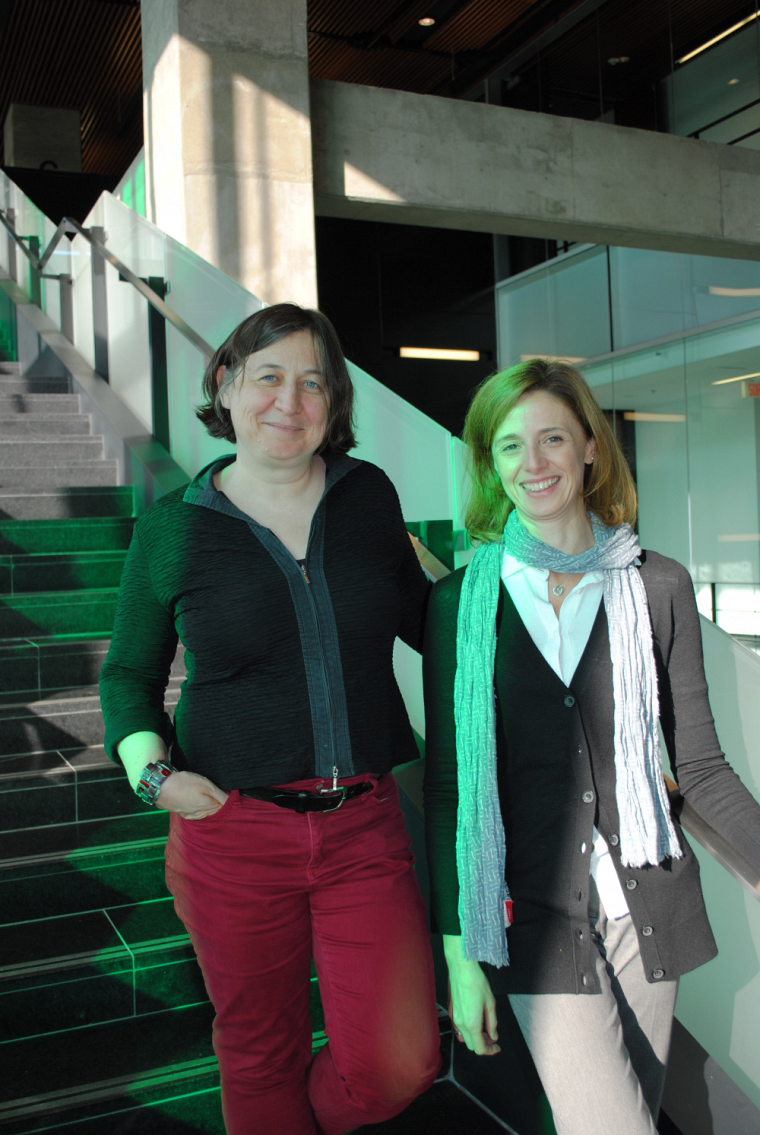 Ce colloque est organisé par Nadine Vincent (Université de Sherbrooke) et Chiara Molinari (Università degli Studi di Milano, Italie).