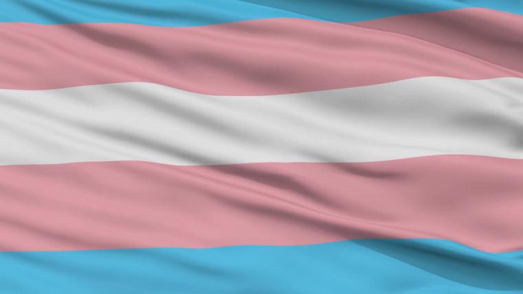 Le drapeau représentant la communauté trans se compose de cinq bandes horizontales.