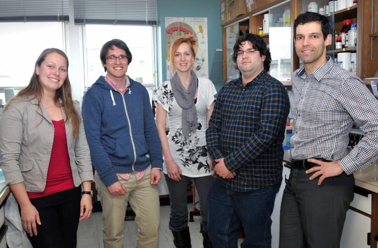 Les auteurs de l'article publié dans Diabetes: Farah Lizotte, Benoit Denhez, Andréanne Guay, Martin Paré et Pr Pedro Miguel Geraldes.