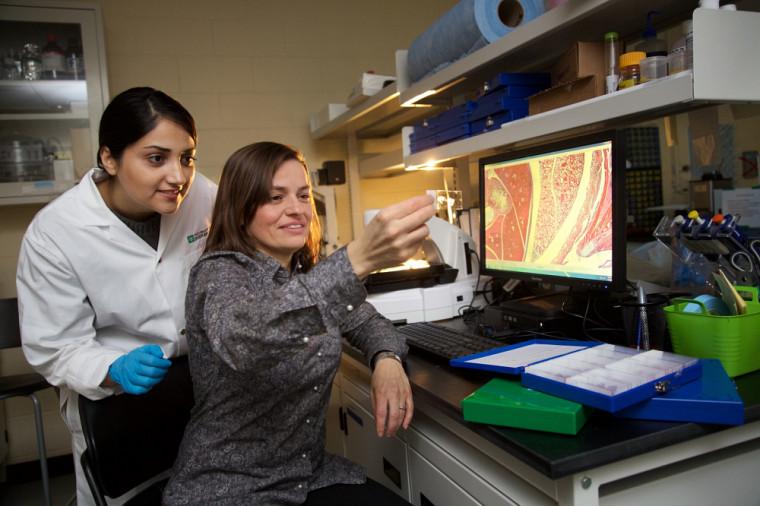 Ève Langelier est professeure au Département de génie mécanique et titulaire de la Chaire pour les femmes en sciences et en génie au Québec
